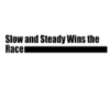 Slow and Steady Wins the Race wholesale showroom